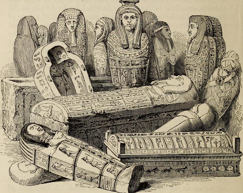 Mumie i sarkofagi egipskie, ryc. z XIX wieku.