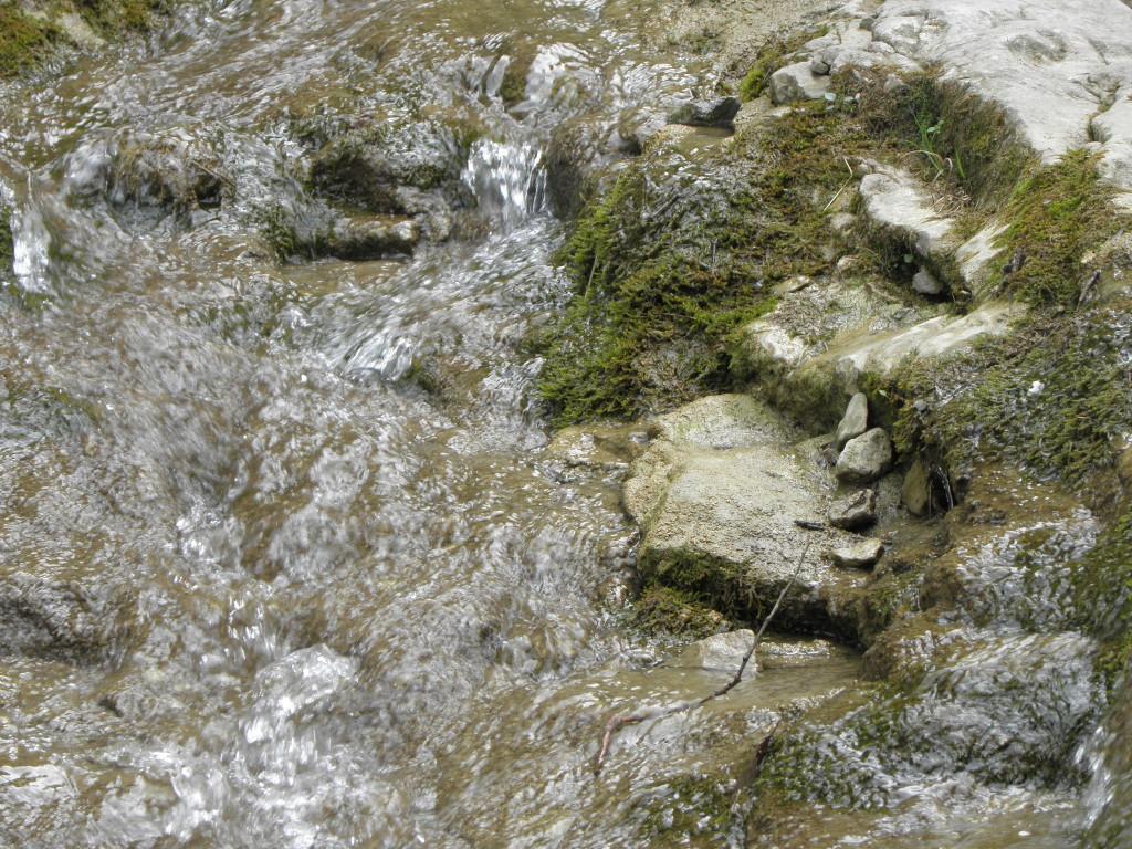 Potok w Wąwozie Homole.